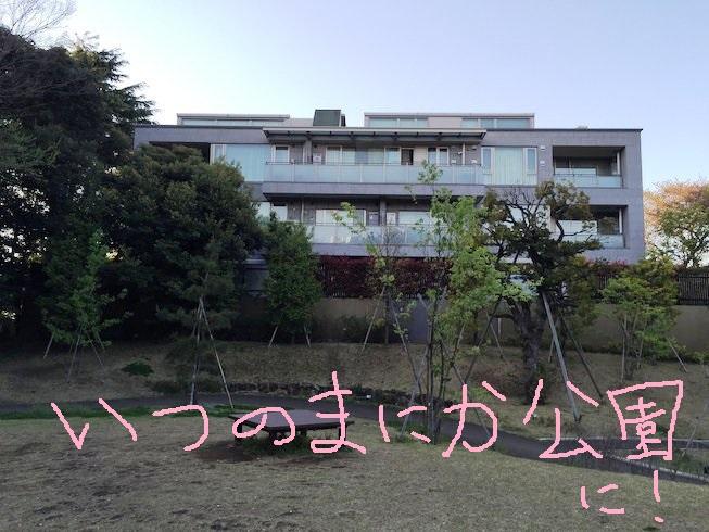 IMG_6485[1]
