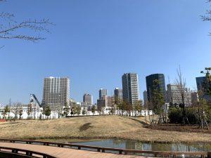 芝浦中央公園から東側を望む