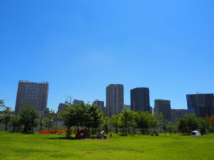 芝浦中央公園から東側を望む。奥に見えるのは港南のタワマン群。